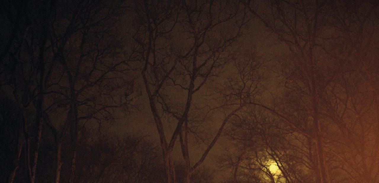 Anna Calvi Strange Weather