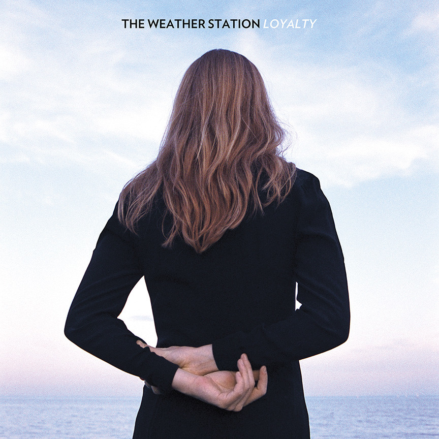 weather station cover