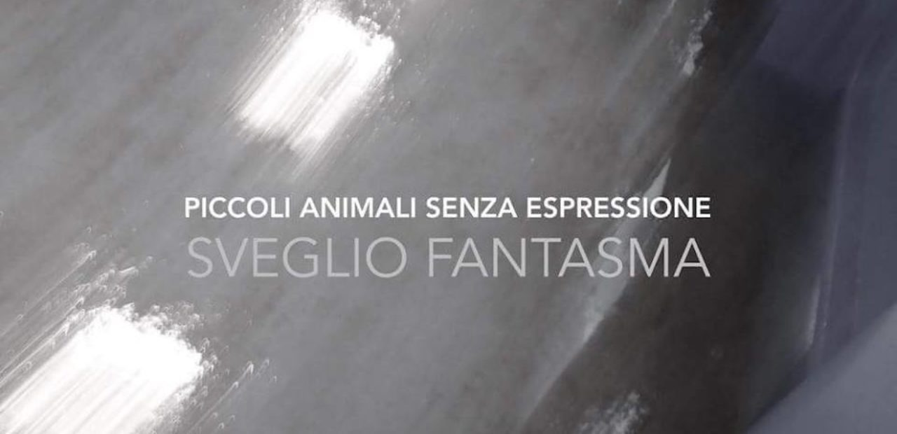 Piccoli Animali Senza Espressione – Sveglio Fantasma Recensione