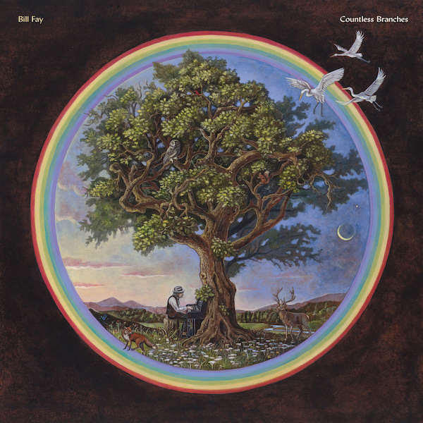 Bill Fay - Countless Branches   Tomtomrock